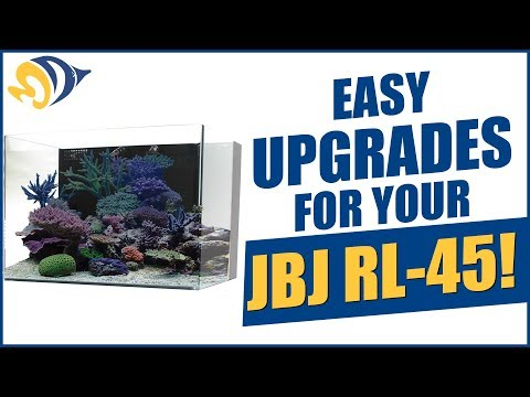 Tank Hacks: Easy Upgrades For Your JBJ RL-45 Rimless Aquarium