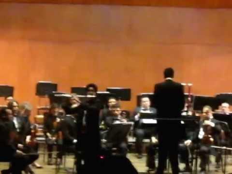 Daniel Santiago Guerrero :: Mozart - Concierto N°2 en Re para Flauta y orquesta