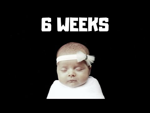 WOW - OUR BABY IS 6 WEEKS...ALREADY!