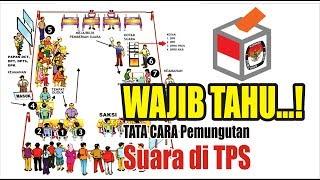 Download Video Tata Cara Mencoblos di TPS MP3 3GP MP4