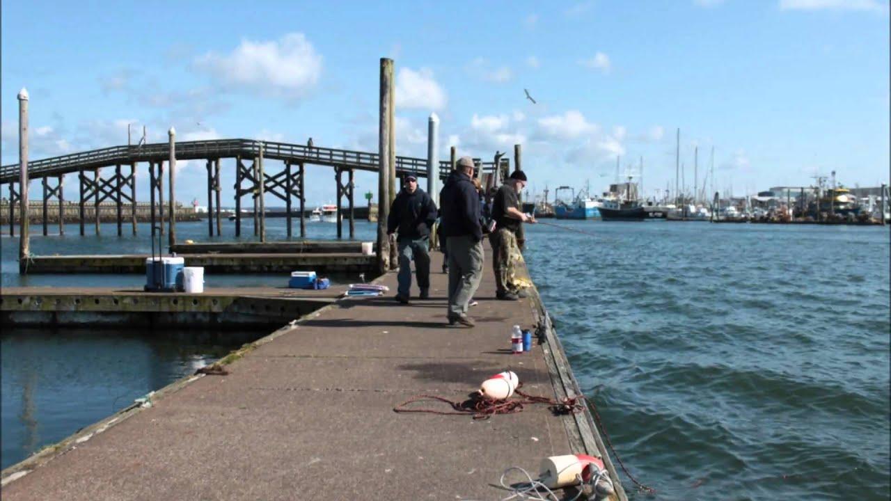 westport wa fishing report