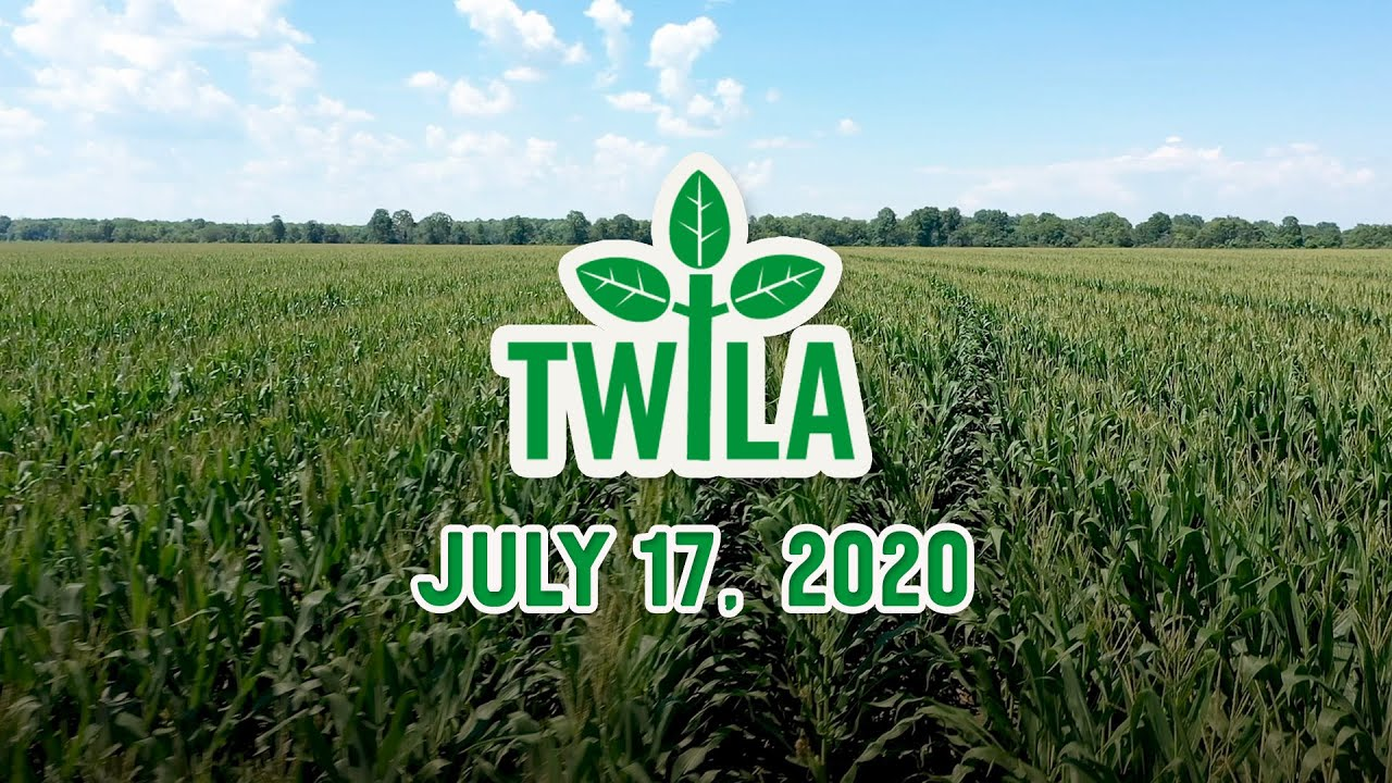 TWILA -- July 17, 2020