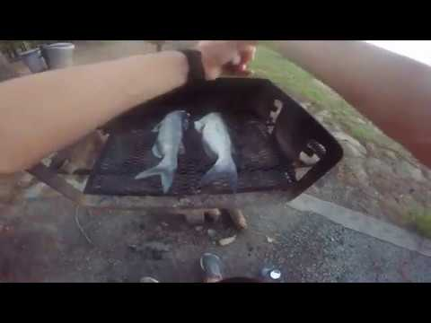 Catfish Catch And Cook Jordan Lake NC: Caught A Rare Catfish!!!