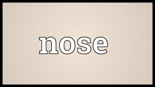Nose Meaning