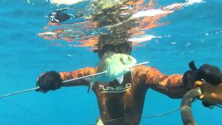 Zıpkın Avı Turkey - 2X Sinarit - 2XÇipura (Dentex,Sea Bream) Spearfishing