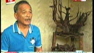 Part 5-Investigative Documentaries Petilla-Loreto-Cari Clan (Leyte Political Dynasty)