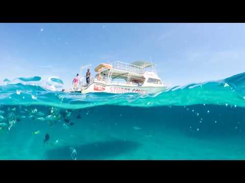 Snorkeling Tour with Stuart Cove's Dive Bahamas