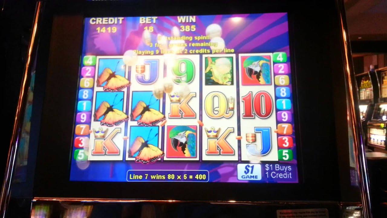 Slots Bonuses