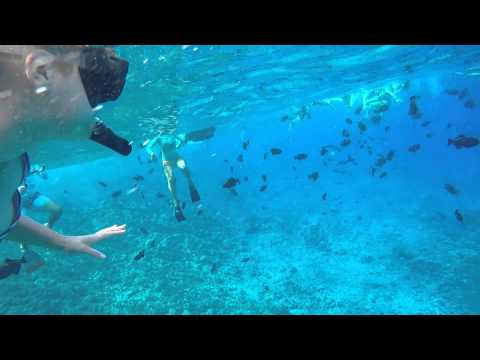 Hawaii snorkeling: Molokini Crater and Turtle Town