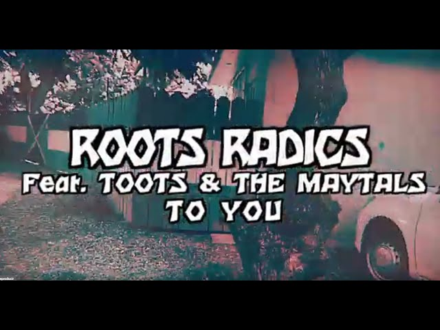 To You - Roots Radics feat. Toots & The Maytals