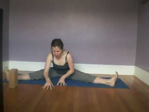 hip openers to sun dial and tortoise pose - Feb 26, 2013