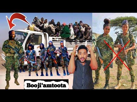 Oduu Simbirtu Wbon Jaal Marron Hogganamu Warana 72 Ol Boji'u Fi Salphina Polisi Oromiya Mudate Tplfn