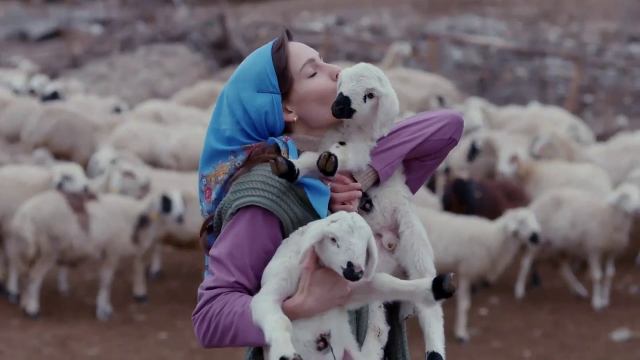 New Bride (Yeni Gelin) Turkish Drama Trailer (Eng Sub)
