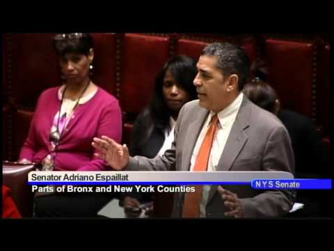 Senator Adriano Espaillat session remarks on the Martin Luther King, Jr. resolution