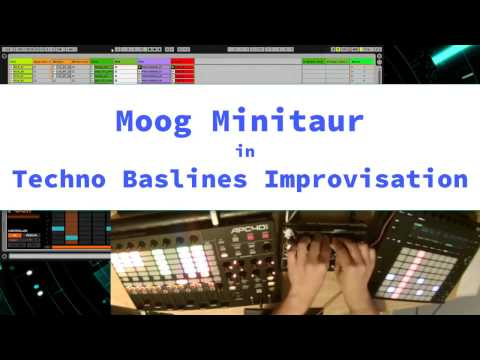 Moog Minitaur in Techno Basslines Improvisation (2017)