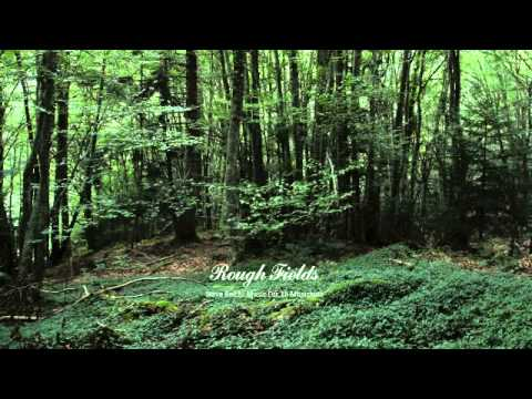 07 Rough Fields - Music for 18 Musicians: VII. Section V [Bomb Shop]