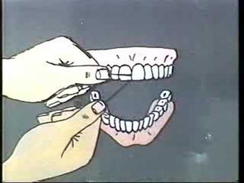 How to Properly Brush and Floss Your Teeth
