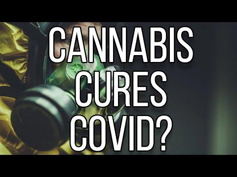 cannabis-stocks-&-analysis-(may-21st,-2020)