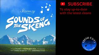 Sounds Of The Skeng - Stormzy (CLEAN) BEST ON YOUTUBE