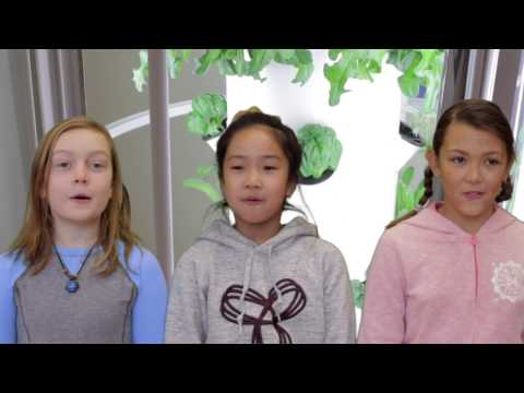 Sustainability  -  Devonshire School Grade 5/6 performs the Hey Buster song