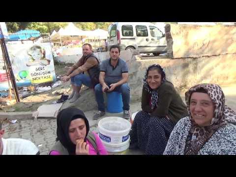 Video : Mahmut Coşkun - Boyabat Mantar Pazarından Röportajlar, İlginç Görüntüler