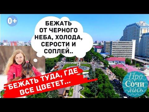 Отзывы переехавших о жизни и переезде в Краснодар ➤Реальные цены и зарплаты➤плюсы минусы🔵Просочились