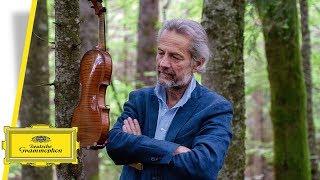 Giuliano Carmignola - Bach Sonatas & Partitas (Teaser)