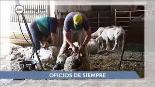 SUMARIO TIERRA Y MAR - PROGRAMA 1170 - Emisión 25.6.17
