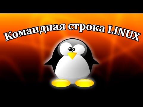 Команды терминала Linux. Урок 2. Чтение текстовых файлов