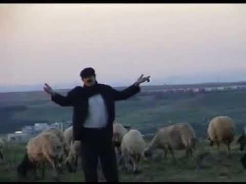 Sait Altun Zazaca Halay