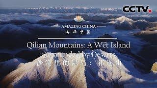 《美丽中国》 沙漠里的湿岛:祁连山 | CCTV