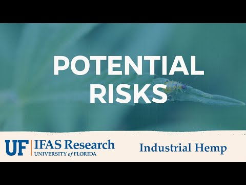 UF/IFAS Industrial Hemp Potential Risks
