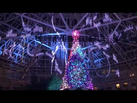 Gaylord palms resort and Convention Center, Christmas light show