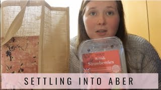 First Weekend in Aberystwyth // UK GROCERY HAUL