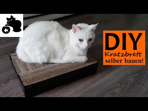 katzen kratzbrett selber bauen diy katzenspielzeug selber machen diy kratzbrett aus kartons. Black Bedroom Furniture Sets. Home Design Ideas