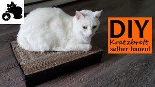 katzenbett selber machen diy katzenbett f r die. Black Bedroom Furniture Sets. Home Design Ideas