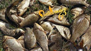 Рыбалка на удочку как в детстве ловля весеннего карася на поплавочную удочку