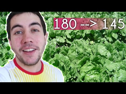 best-meal-ever-|-how-to-do-keto-|-lovevlogs