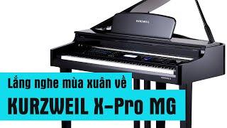 PIANO điện KURZWEIL - NS Vũ Bảo với Lắng nghe mùa xuân về