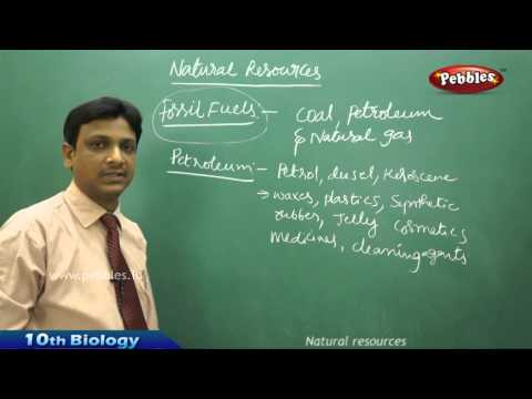 Natural Resources  AP & TS Class 10th State Board Syllabus Biology
