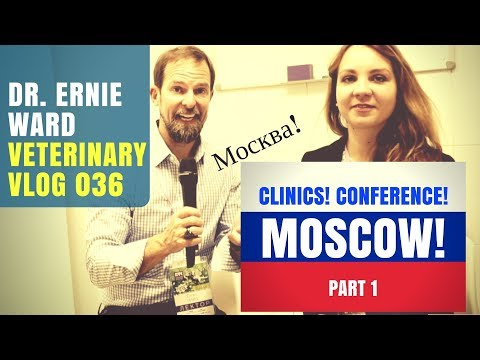 Moscow Veterinary Conference & Clinic pt 1