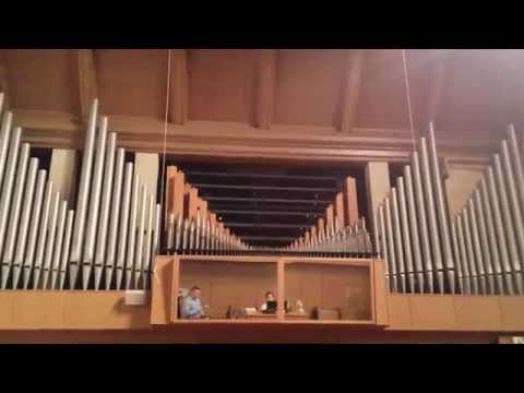 Pipe Organ- Joy to the world