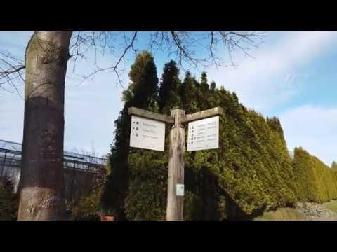 (Film 12) Wanderung von Holthausen nach Rehsiepen, Sauerland