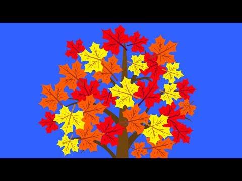 Вопрос: Почему листья весной меняют цвет и падают?