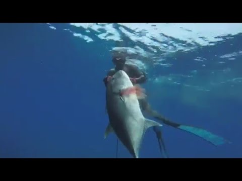 PERSONAL BEST GT!! SPEARFISHING IN THE PHILIPPINES 2020!!