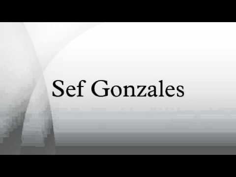 sef gonzales The family lived in blacktown until early 2000 in july 2001, teddy and mary  gonzales resided at 6 colins street, north ryde with their son sef.