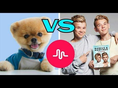 Marcus & Martinus VS jiffpom - Musical.ly