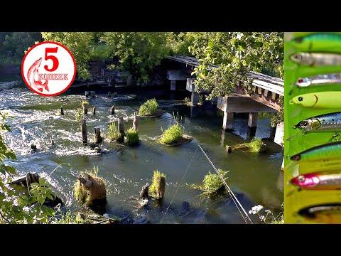 Голавль чуть не сломал спиннинг! Рыбалка на потрясающе красивой реке!!!