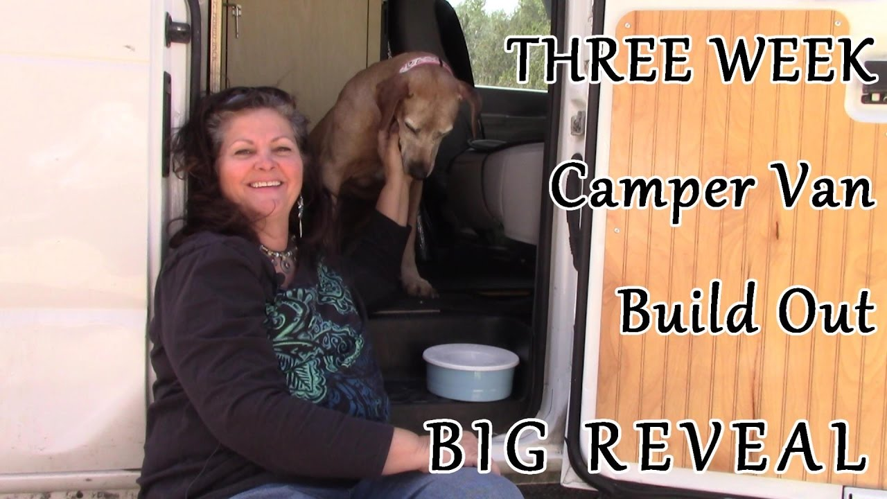 Cargo Van Conversion Build Out REVEAL Completed In Just 3 Weeks A TBI Moment