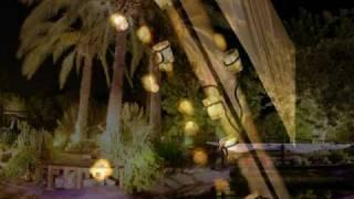 Repeat youtube video ברגש רן שיינברגר צלם - שירי ודן 13.9.09 גני יער